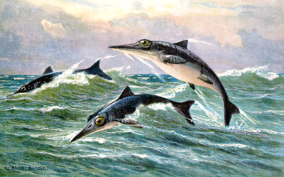 ichthyosaurs 